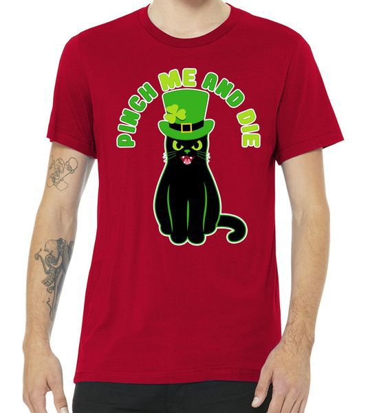Pinch Me And Die St. Patrick's Day Cat Premium