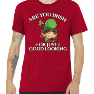 Are You Irish or Just Good Looking Leprechaun Tshirt